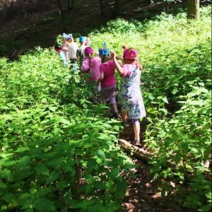 Die Kinder laufen bei der Schatzsuche auf einem Pfad durchs Springkraut